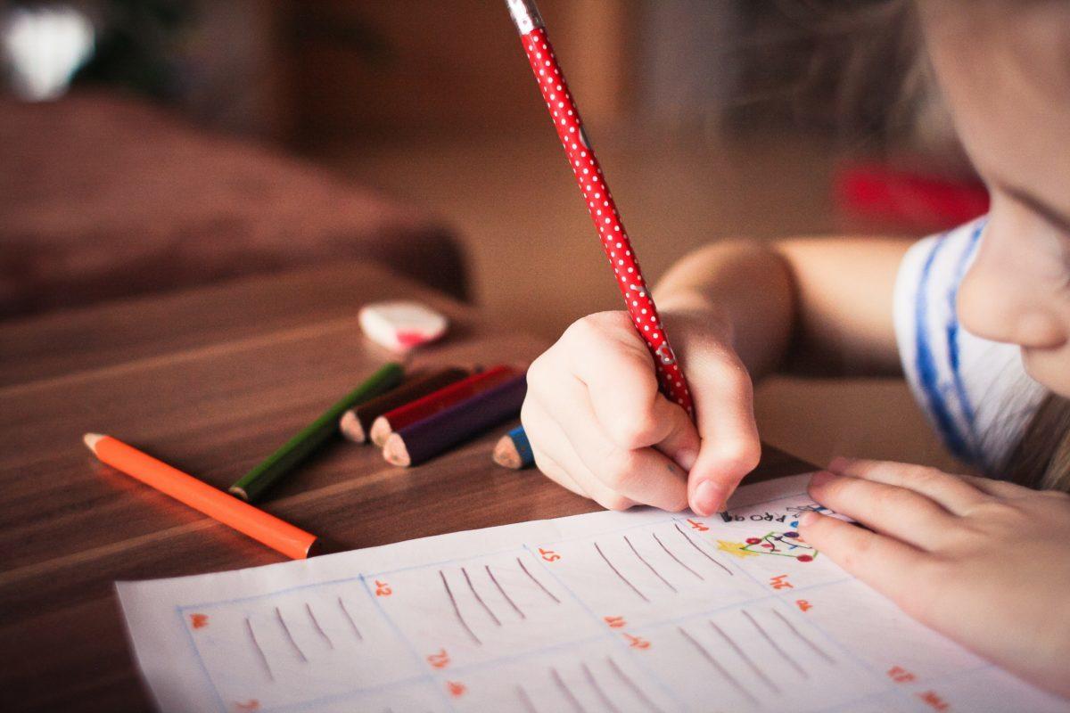 Programul Școala după școală