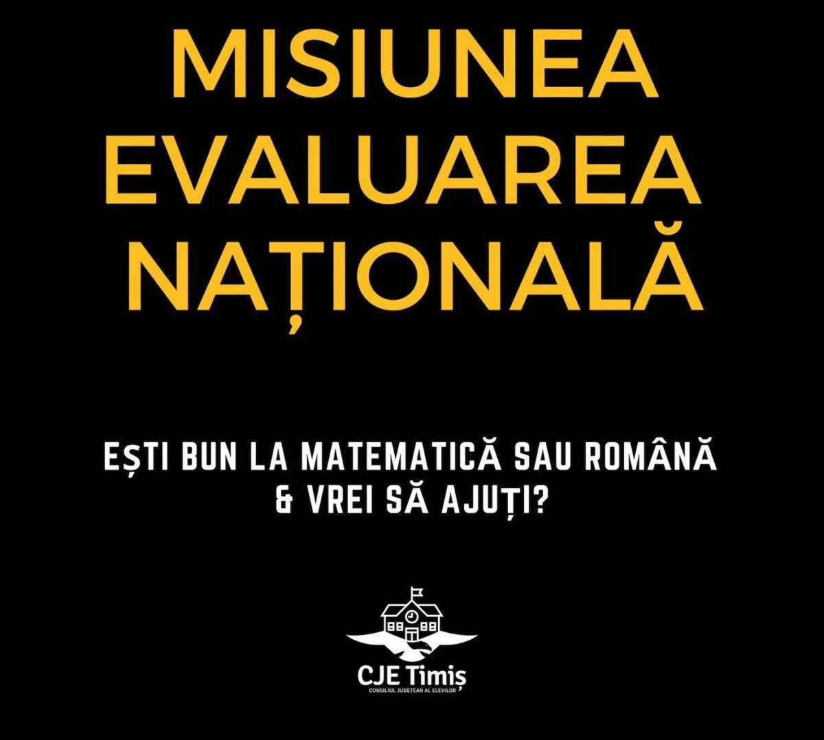 Liceeni care meditează gratuit la Matematică și Română