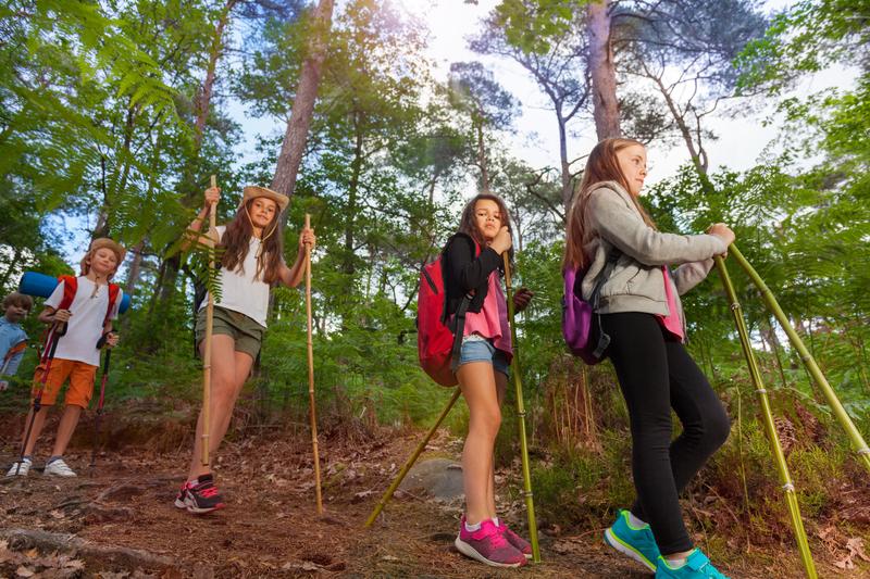 Tabere scolare, elevi in excursie in vacanta / Foto: dreamstime.com